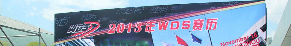 2013WDS全球启动仪式暨天津大奖赛新闻发布会举行
