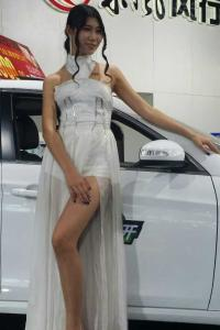 2014汽车博览会靓车模