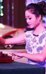 2016中国车模国际交流赛 舞台风采
