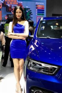 2017(十四届)中国昆明国际汽车博览会车模